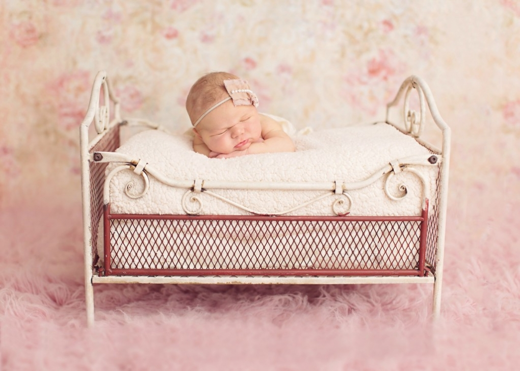 orchard park newborn photographer