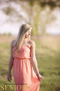 grassy field at buffalo waterfront by portrait pretty photography