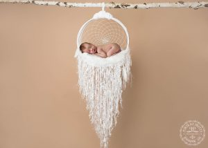 newborn-baby-in-dreamcatcher-by-buffalo-ny-photographer